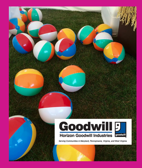 Screen Shot 2015 07 17 at 2.15.38 PM - Parrotheads Help Spread The Word About Horizon Goodwill