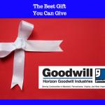 Screen Shot 2015 12 02 at 9.56.41 AM 150x150 - The Top Ten Horizon Goodwill Blogs Of 2015